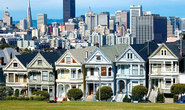 House sitting and Pet Sitting in San Francisco - the perfect alternative to dog boarding