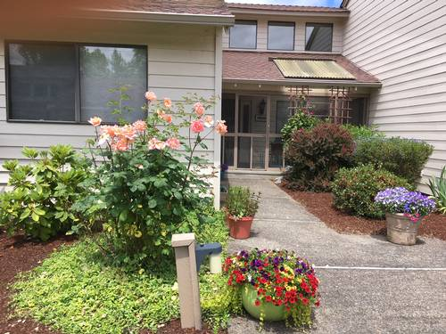 Picture of House requiring House Sitter at House Sitters America, USA. Location Albany, Oregon 97322